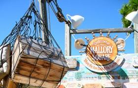 Mallory Square has lots of food and entertainment